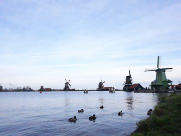 Netherlands reclamation